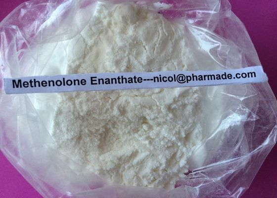 China Pó oral dos esteróides do acetato de Primobolan do acetato de Methenolone para drogas do halterofilismo do músculo fornecedor